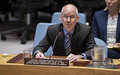 In Security Council briefing, UN envoy highlights achievements and need for cooperation for progress to continue