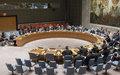 UN Secretary-General's Report on Somalia