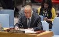 SRSG Keating briefs the Security Council